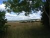 oxfordshire plain