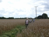 nordic walkers in poppy field