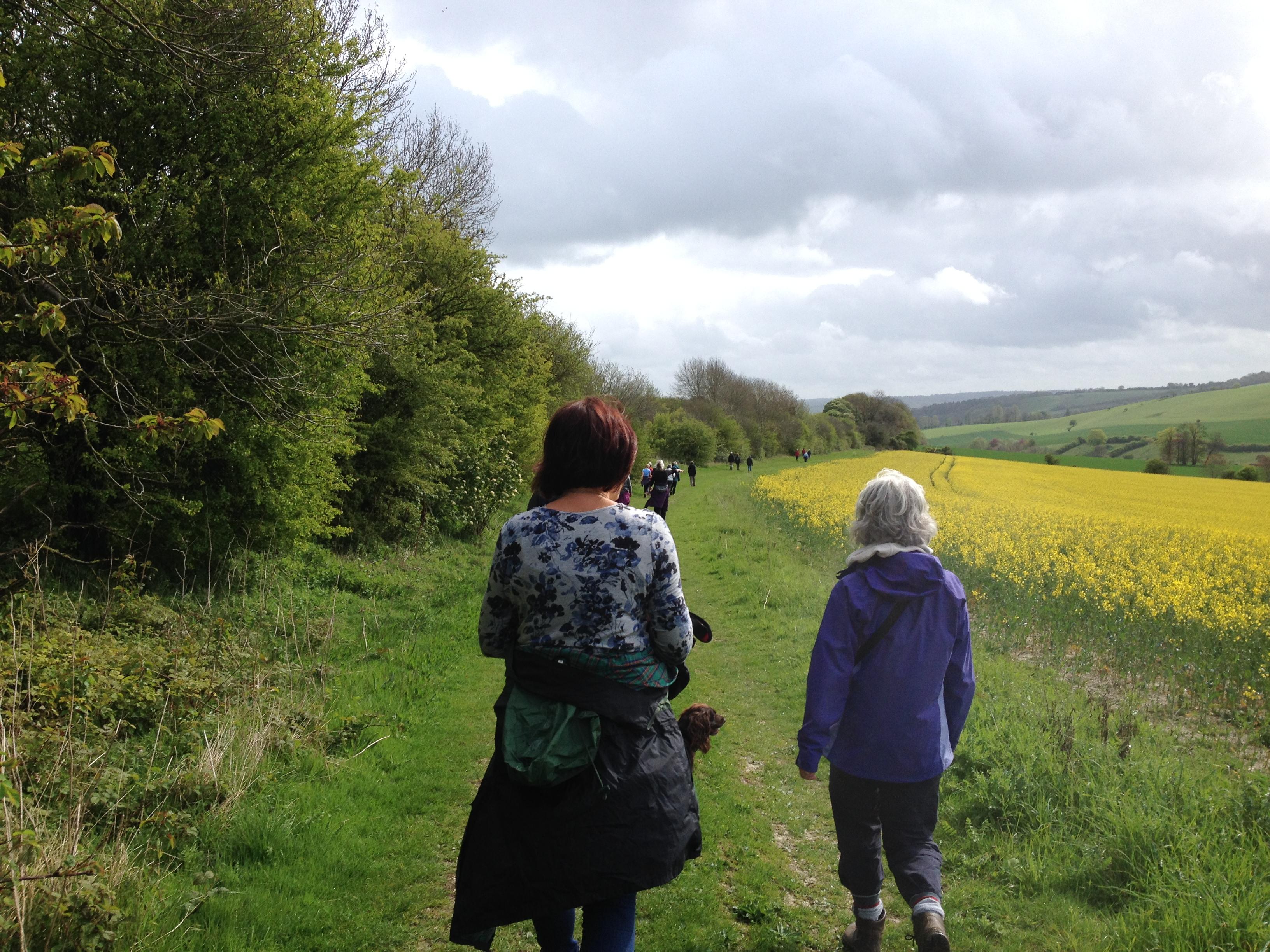 Health walk Goring