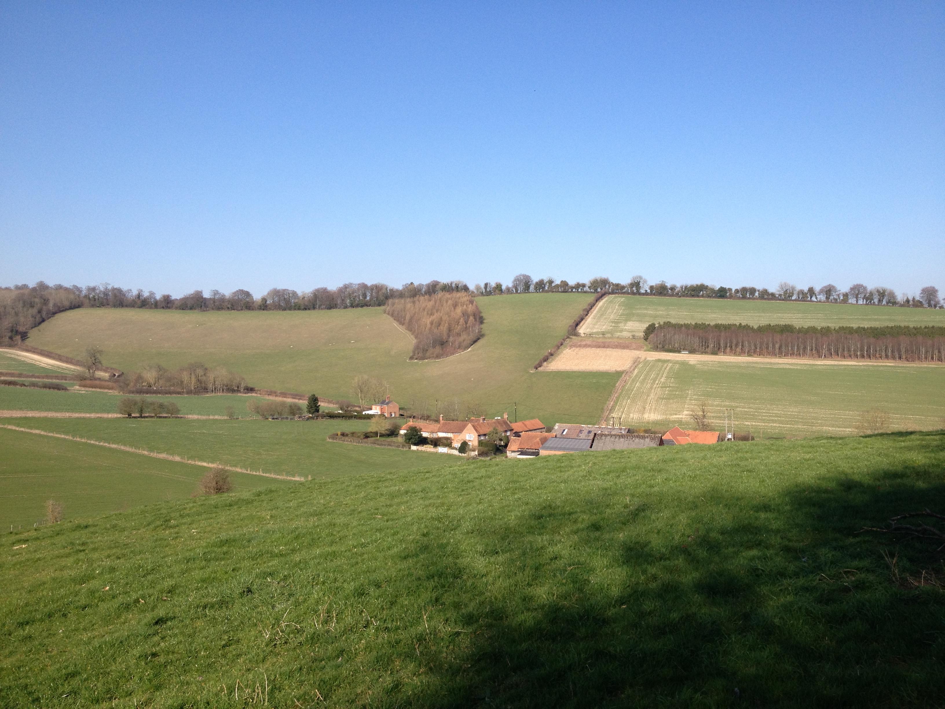 valley bottom farm_0563